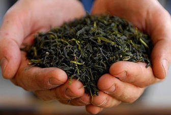 Russia increases tea exports to Azerbaijan