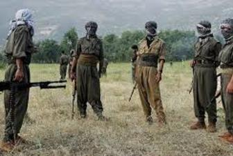 Turkish Armed Forces conduct operations to eliminate key PKK figures